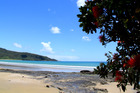 The beautiful coastline of Northland masks the social inequality which exists in the region. Photo / Northern Advocate.