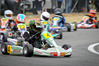 BAY'S BEST: Cadet Rok class driver Tom Bewley (4) did the best of the Hawke's Bay drivers at the North Island champs. PHOTO/WARREN BUCKLAND