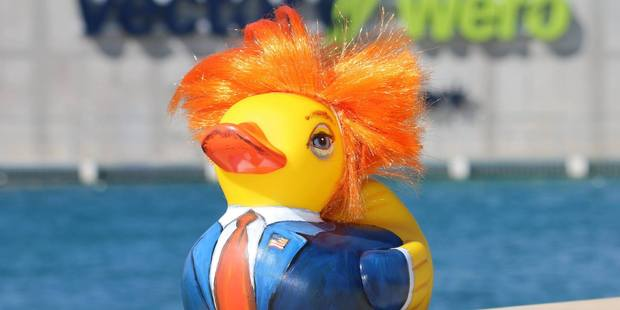 The Don(ald) Trump Duck created by local business CSL Containers was a favourite. Photo / supplied