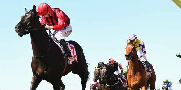Prized Icon races clear to win yesterday's VRC Derby from New Zealand's big hope Sacred Elixir. Photo / Getty Images