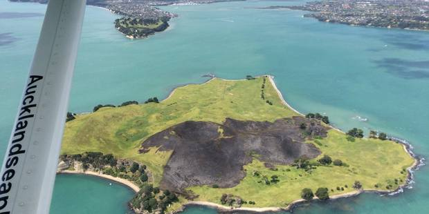 Loading A black scar is visible from a Seaplane after today's Browns Island fire. Photo / Michael Jeffs