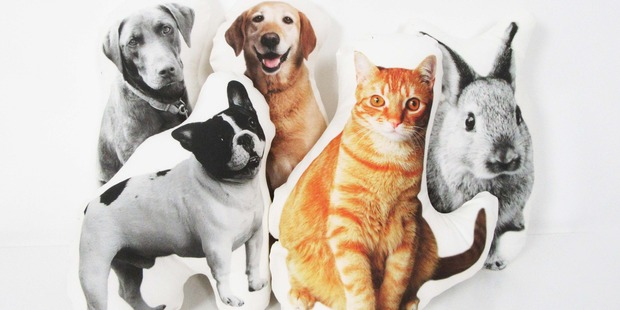 Some of the pet pillows Auckland woman Andie Page has made. Photo / Supplied