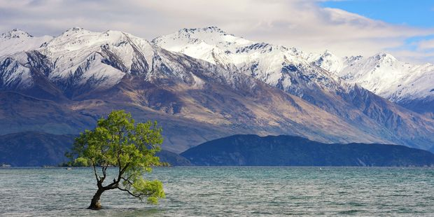 A man has been seriously injured after the chopper he was in crashed outside Wanaka. Stock image.