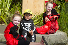 My boys  - along with increasingly more Kiwi kids - embrace the ghoulish custom of Halloween and its sweet rewards. Photo / Ben Fraser