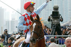 French jockey Gerald Mosse, riding British horse Red Cadeaux, celebrates after winning the 2400-meter Longines Hong Kong Vase horse race at the Shatin race track in Hong Konh. Photo / AP