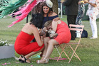 Melbourne Cup fans rest up before heading home. Photo / Getty