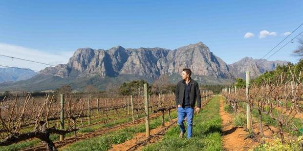 You can find a very nice tipple in the wine regions near Cape Town. Photo / Tyson Mayr