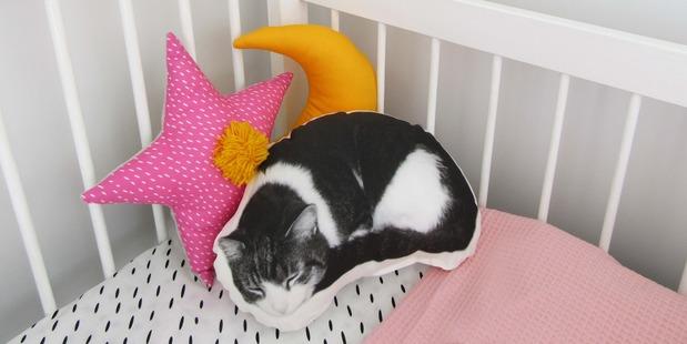 A sleeping cat pillow. Photo / supplied