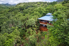 An aerial view of treehouse lodging at Secret Bay Resort in Dominica. Photo / Secret Bay