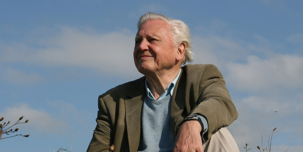 Loading Sir David Attenborough's A Quest for Life stage show is on at Auckland's Civic Theatre on February 2. Photo / Supplied