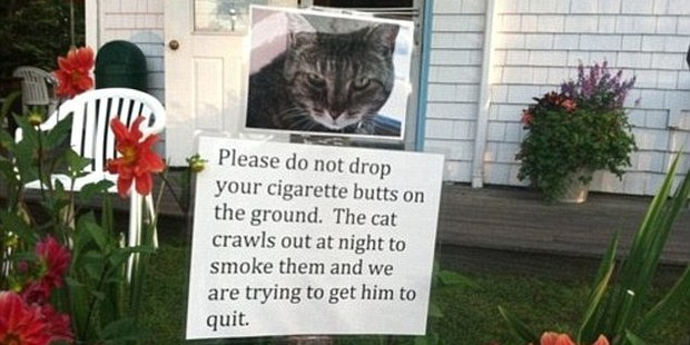 Authors of hilarious passive aggressive notes are using notices to publicly shame repeat offenders.