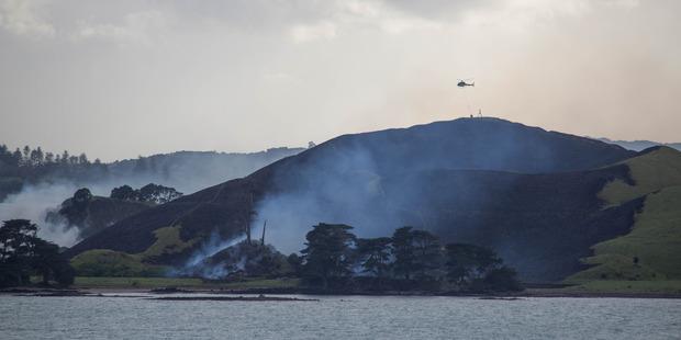 Photos of the Browns Island fire. Photo / Matthew Davison