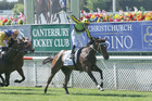 A delighted Michael Coleman enjoys the 2000 Guineas win of Ugo Foscolo at Riccarton on Saturday. Photo / Trish Dunell