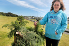 Gina Hagley stands next to one of the 2m Norfolk Island pine which were removed after a large number had been cut or pulled out of the ground by vandals.