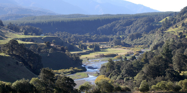 The  Ruataniwha Water Storage Scheme will be reviewed.
