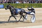 Lazarus first, daylight second in the $750,000 New Zealand Trotting Cup at Addington yesterday. Photo / NZ Racing Desk