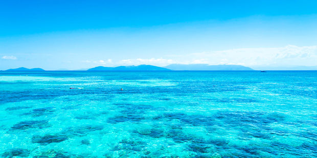 A British tourist has died while scuba diving on the Great Barrier Reef. Photo / 123RF