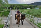 ON THE ROAD: Louise McNutt on a trial trek in Gisborne earlier this year, aboard Pedro, with Koru alongside, in preparation for her 2500km journey through New Zealand.