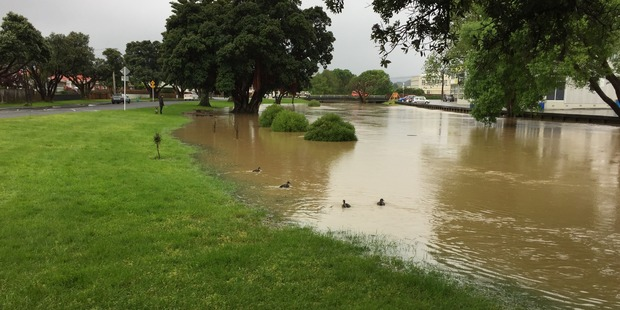 Hutt City Council is urging residents to prepapre for evacuations after the Waiwhetu Stream burst its banks. Photo / Melissa Nightingale