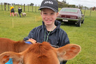 Sacha Turnball, eight and from Oeo, shows pedigree Jersey calf Caramel. PHOTO/ BEVAN CONLEY t