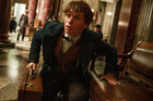 Eddie Redmayne in a scene from the from the film, Fantastic Beasts and Where to Find Them. Photo / Jaap Buitendijk