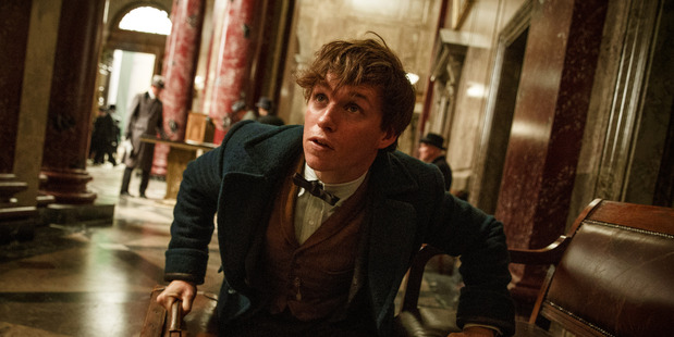 Loading Eddie Redmayne stars as Newt Scamander in Fantastic Beasts and Where to Find Them. (Photo/Supplied)