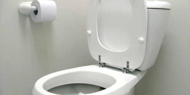 If your toilet is unusable, you may have to dig your own. Photo / File