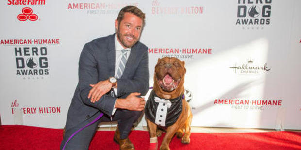 Zach Skow poses with his French Mastiff Hooch on the red carpet at the 2016 American Humane Association's Hero Dog of the Year. Photo / AP