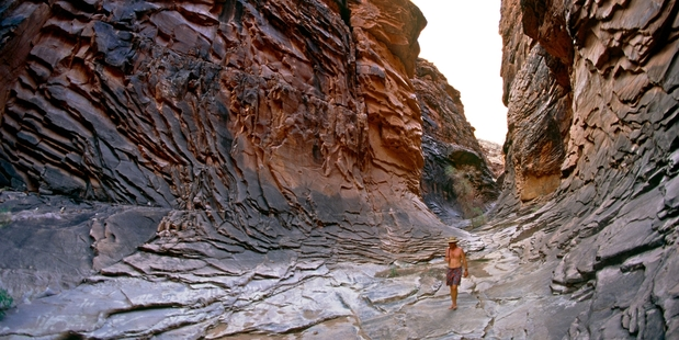 Hiking down North Canyon at the Grand Canyon, Arizona. Photo / Getty Images