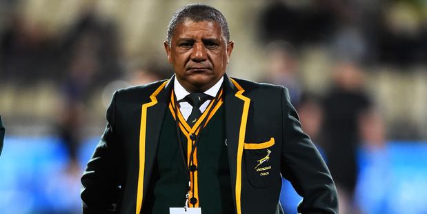 Springboks coach Allisteer Coetzee. Photo / Photosport