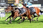 Sofia Rosa winning the Australian Oaks in April. Photo / Darryl Sherer