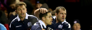 Scotland's Sean Maitland celebrates his try during the Autumn International match against Argentina. Photo / AP