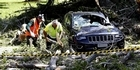 Watch: Watch : Tree crushes cars at Cornwall Park