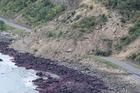 Huge slips blocking State Highway 1 north of Kaikoura. Photo / Mark Mitchell