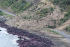 Huge slips, caused by the 7.5 earthquake, blocking State Highway One north of Kaikoura. Photo / Mark Mitchell