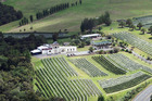 Longview Estate was taken over by a group of Chinese and New Zealand investors in March and the super-sweet White Diamond wine is being lapped up by the Chinese.