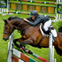 Kristin Robinson on Ngahiwi Indiva clears a fence in the Caledonia Amateur Rider series during the showjumping competitions.