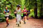 Race for all: Runners enjoying the track through the Redwoods as part of the Podium Rotorua half marathon last year. Photo/Running Events