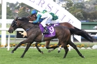 Coldplay gets up to win the Eagle Technology Stakes at Ellerslie. Photo / Trish Dunell