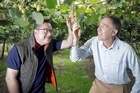 Kiwifruit growers from Italy, Zespri's major Northern Hemisphere supplier, visited Bay of Plenty orchards this week to share information and techniques.
