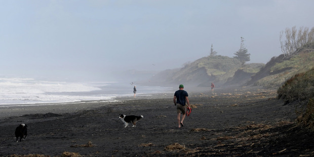 Two more bodies were found north of Muriwai beach this morning. Photo / Greg Bowker