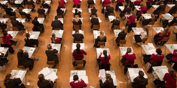 New Zealand ranks below England, Ireland, the USA, and Australia across maths at both Year 5 and Year 9 and science at Year 5. Photo / Brett Phibbs