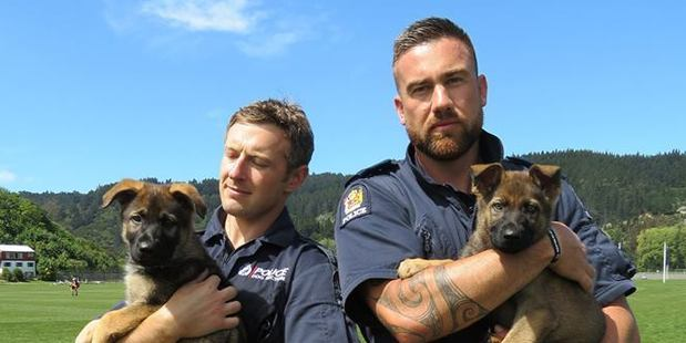 Constable Tim Roy, left, with South, and Constable Regan Mauheni with Paikea. Photo / Southern District Police