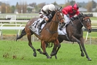 Aide Memoire (left) tackles the Captain Cook on Saturday. Photo / Race Images