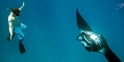 Swimming with a mantaray in Fiji.