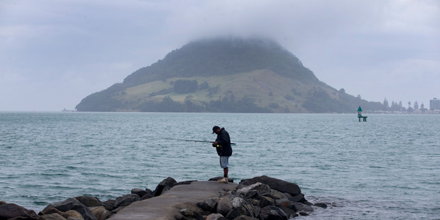 The Bay of Plenty Regional Council will reassess the reef at Mauao when sea conditions allow. Photo / Alan Gibson