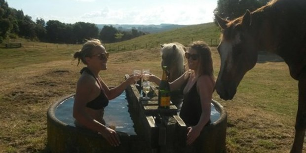 Ladies at lunch in a trough.