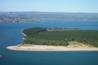 Matakana's Panepane Point is to be returned to iwi.