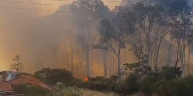 Loading Eight fire trucks and more than 35 firefighters were called to battle the blaze. Photo / Supplied