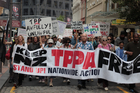Anti-TPP protesters have gathered in front of the Governor-General's residence in Wellington. Photo / Callum Osborne
